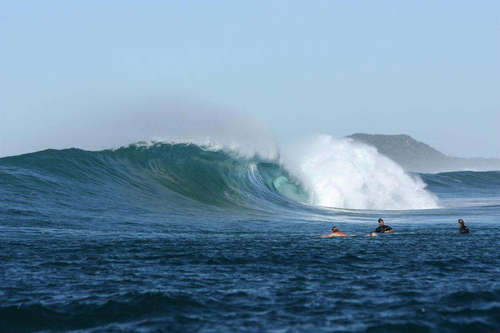 dolies and surf2 237