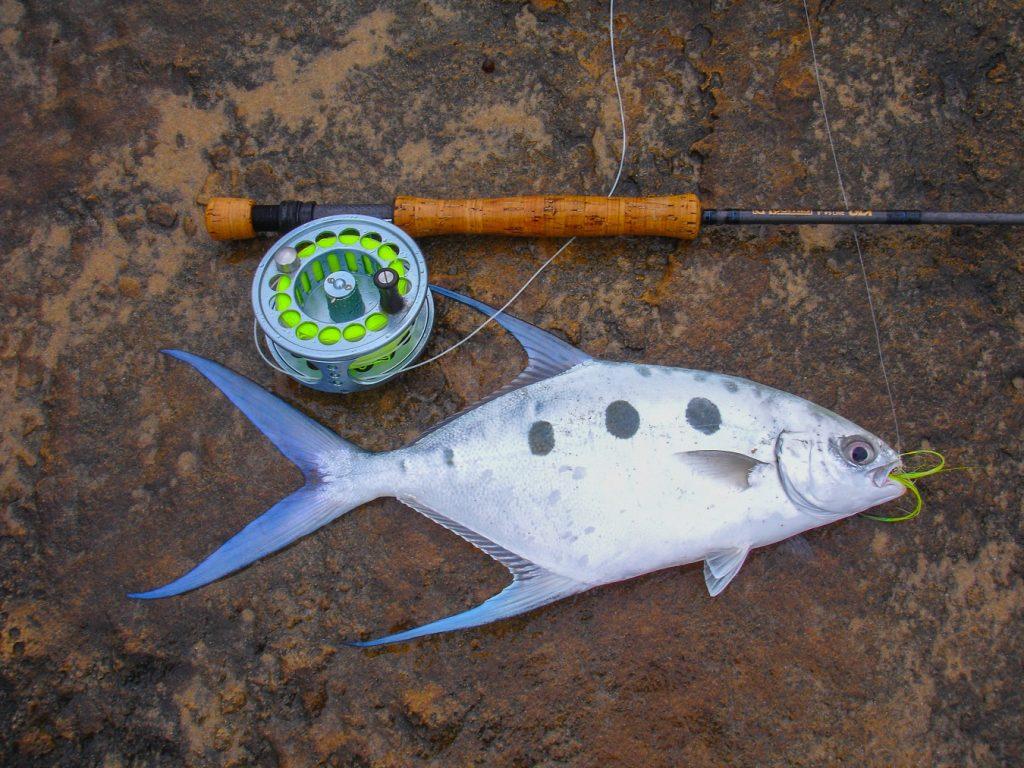 flyfishing-6